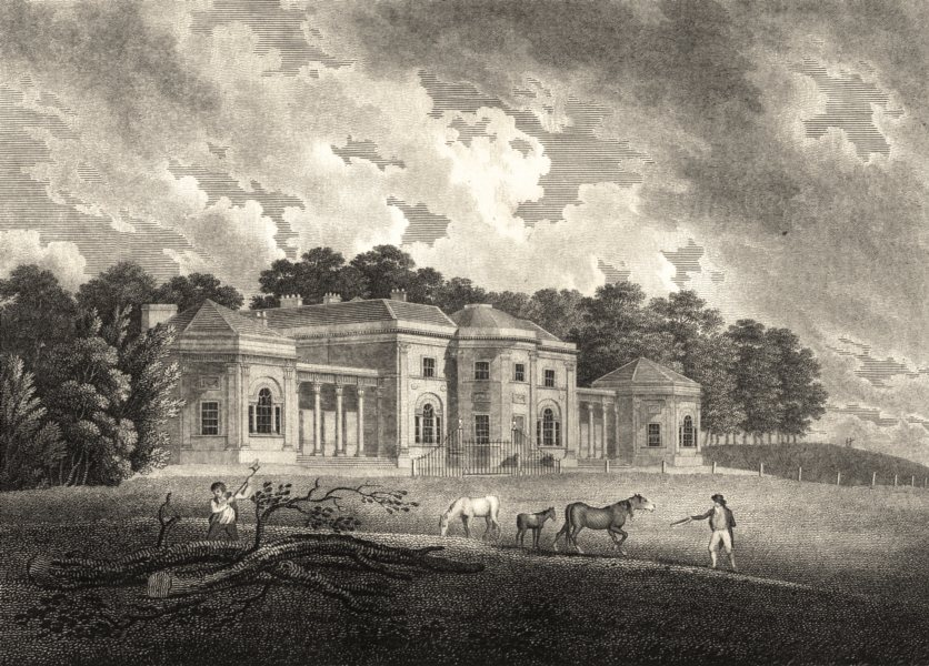 LANCASHIRE. Oldham Heaton House. Aikin / Stockdale. Horses. Storer 1795 print