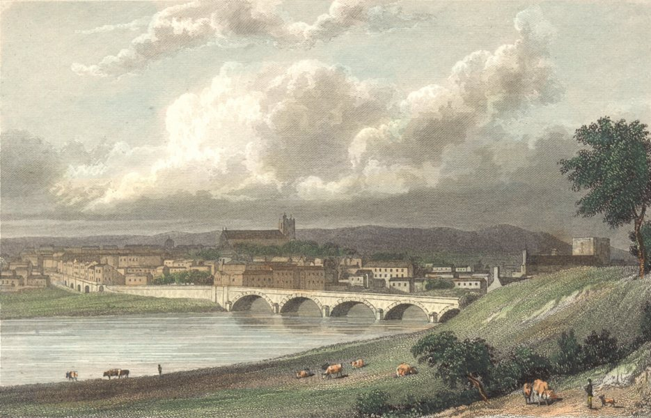 Associate Product CUMBRIA. Cumbs Carlisle from the north. Hand coloured (Westall) 1830 old print