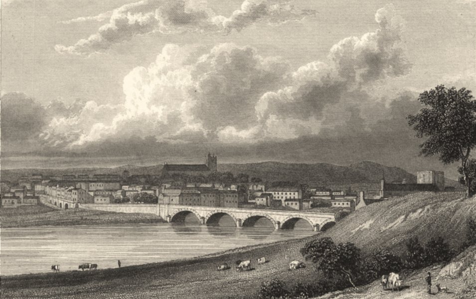 Associate Product CUMBRIA. Cumbs. Carlisle from the North. (Westall) 1832 old antique print