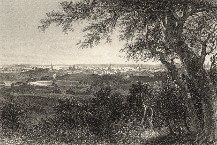 Associate Product MARYLAND. A view of the city of Baltimore (from Druid Hill Park)  1874 print