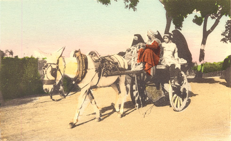 EGYPT. Cairo. On Drive. Hand coloured. 1900 old antique vintage print picture