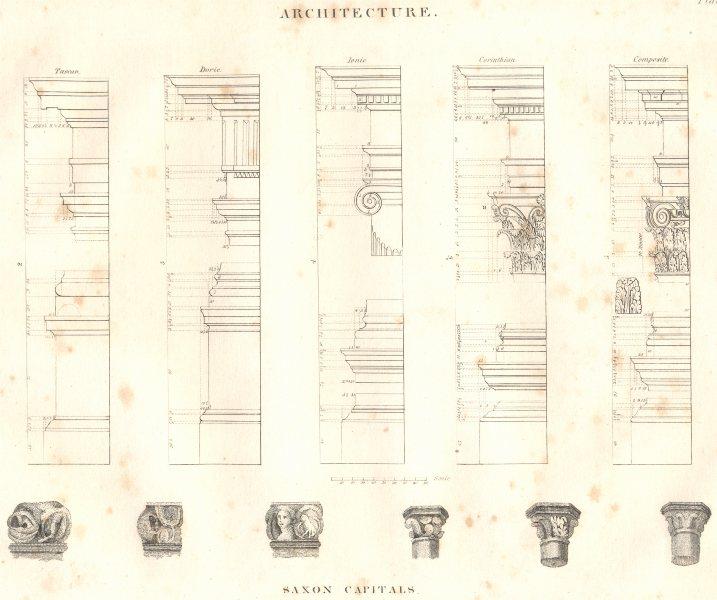 Associate Product ARCHITECTURE. Tuscan Doric Ionic Corinthian Composite; Saxon Capitals 1830