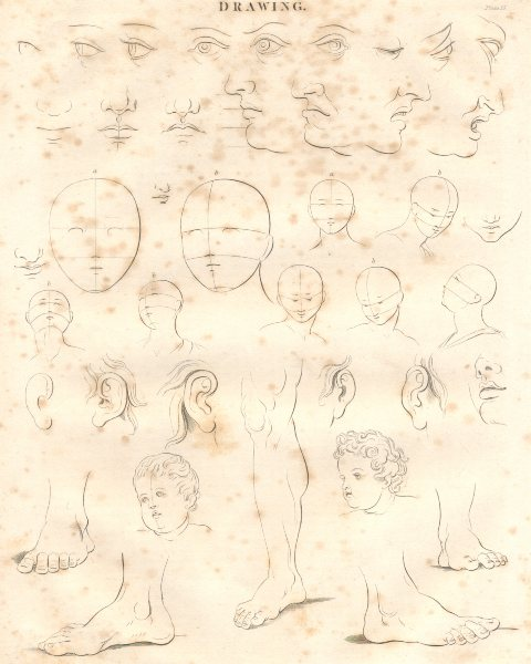 Associate Product FINE ARTS. Drawing faces, feet and ears. (Oxford Encyclopaedia) 1830 old print