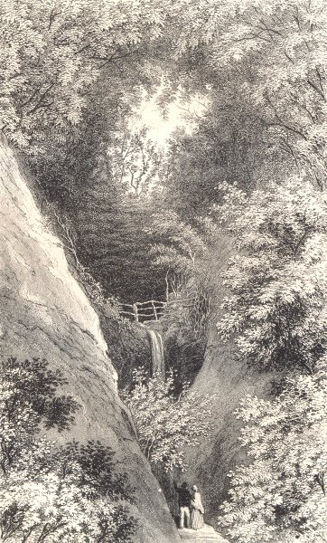 Associate Product ISLE OF WIGHT. Shanklin Chine. Waterfall 1864 old antique print picture