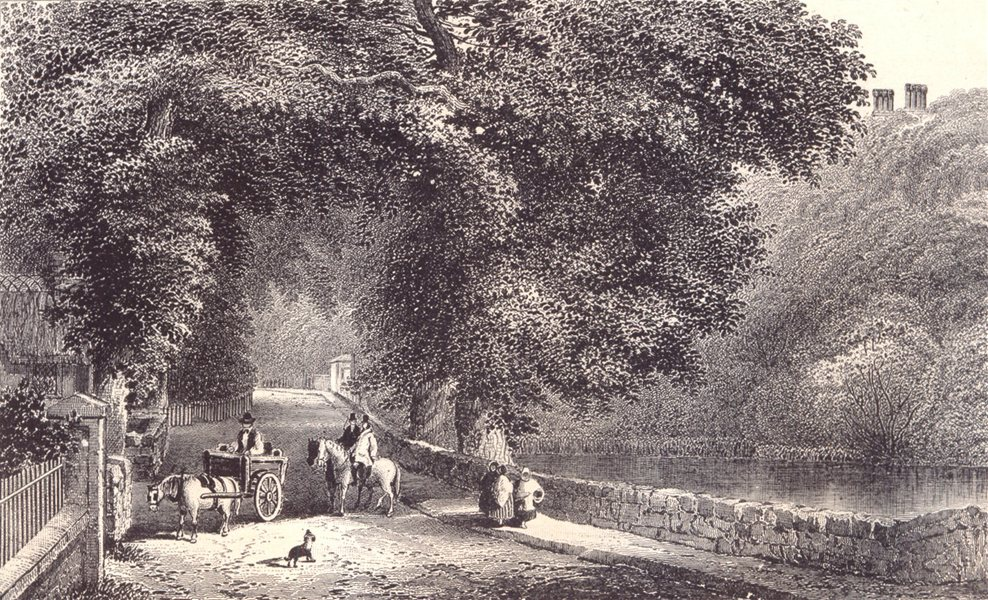 Associate Product ISLE OF WIGHT. Bonchurch Pond. Horse & cart. Horses. 1864 old antique print