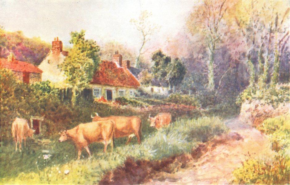 Associate Product CHANNEL ISLANDS. Farmhouse, Guernsey 1904 old antique vintage print picture