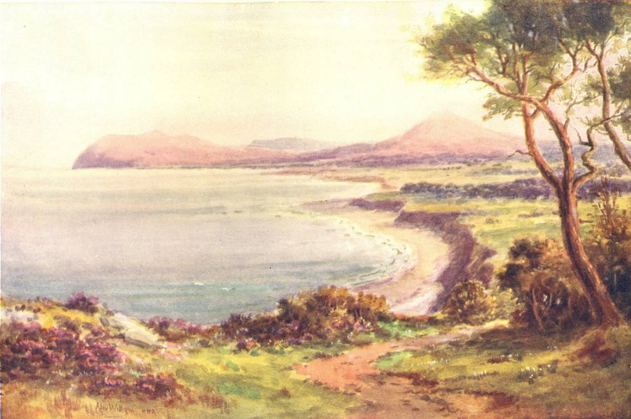 Associate Product IRELAND. Leinster. Killiney Bay and Bray Head. Beach. c1912 old antique print