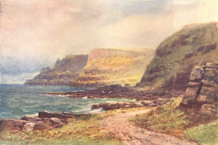Associate Product IRELAND. Ulster. The Giant's Causeway c1912 old antique vintage print picture