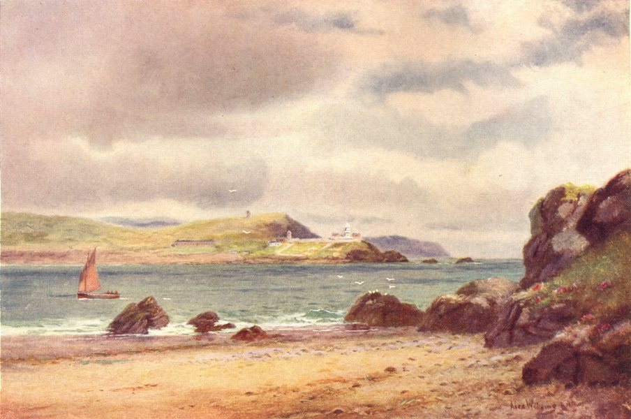 Associate Product IRELAND. Munster. Entrance to Cork Harbour. Sailing boat. Beach. c1912 print