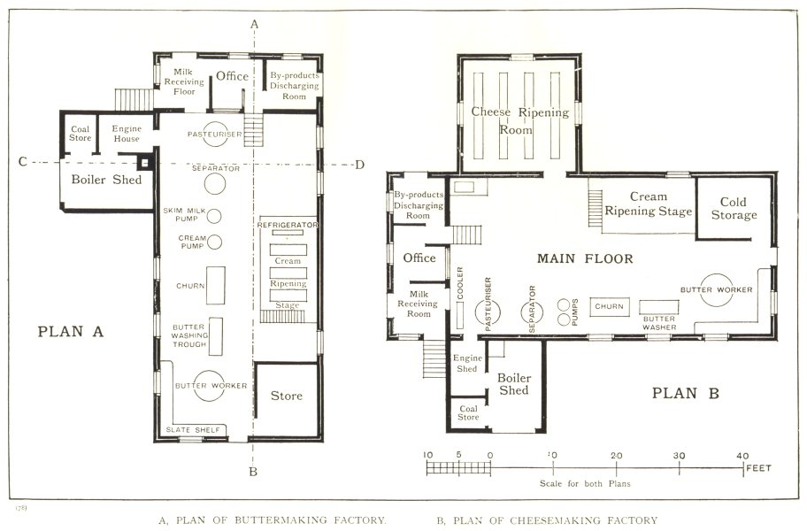 Associate Product DAIRY FACTORIES. – II; A. plan Buttermaking Factory. Cheesemaking 1912 print
