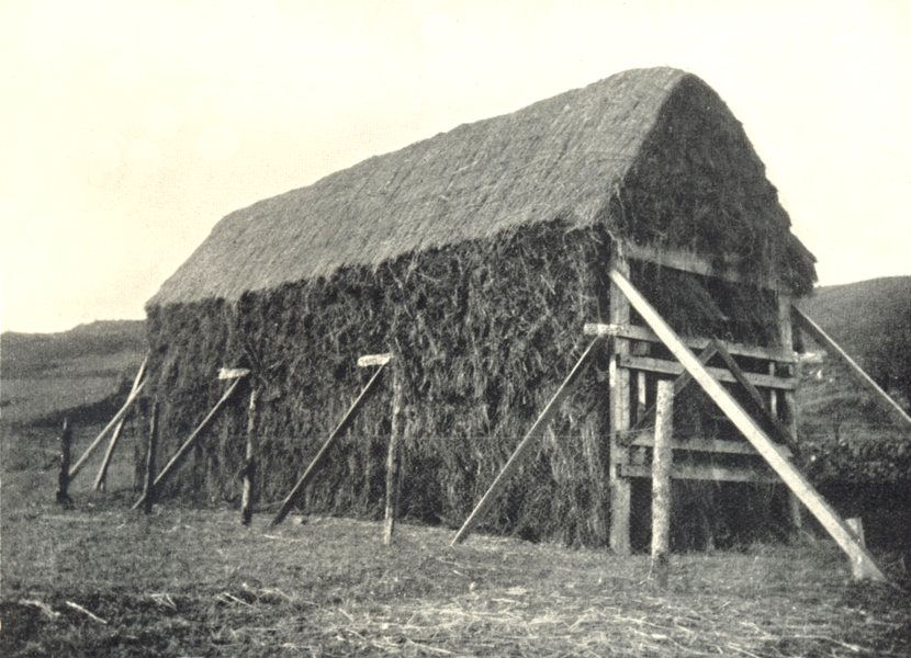 Associate Product FARMING. McAinsh-Robertson grain drying rack. Completed stack 1912 old print