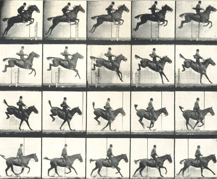 Associate Product HORSE JUMPING FENCE. The Leap. Suspension, Landing, and Recovery 1912 print