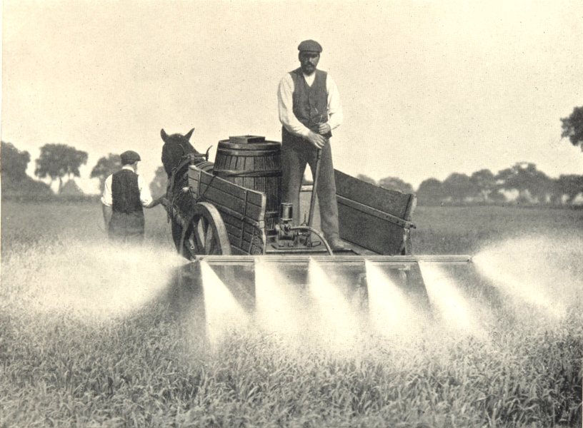Associate Product FARMING. Charlock-Spraying by Hand-Power from an Ordinary Farm-Cart 1912 print
