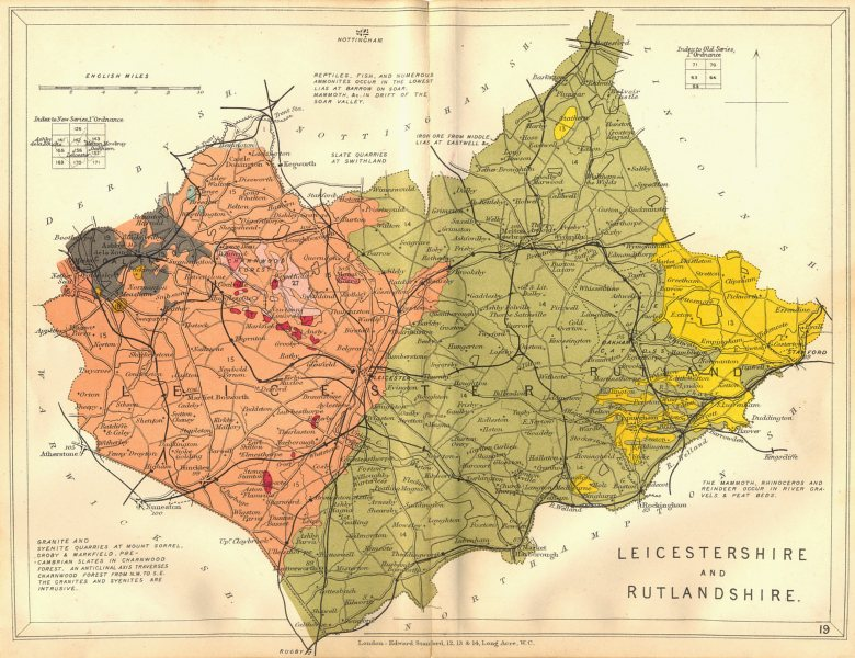 LEICESTERSHIRE AND RUTLANDSHIRE. Geological map. STANFORD 1880 old antique