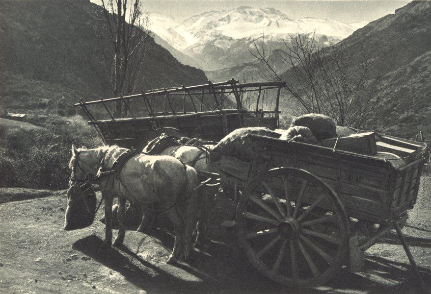 Associate Product CHILE. Valle Rio San Francisco. Transporte Mercaderías carreta. Valley. 1932