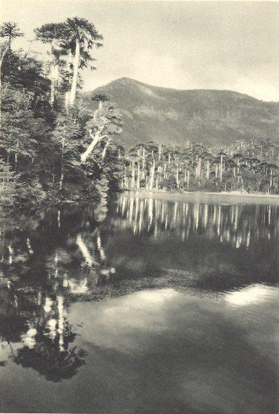 Associate Product CHILE. Laguna Esmeralda. 1932 old vintage print picture
