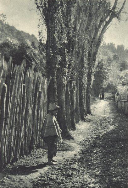 Associate Product CHILE. Tenaun (Chiloé) . Chiloe 1932 old vintage print picture