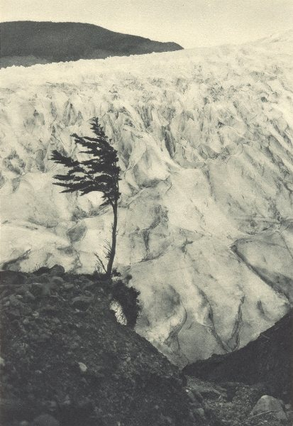 Associate Product CHILEAN PATAGONIA. Ventisquero Barros Arana. Barros Arana glacier 1932 print