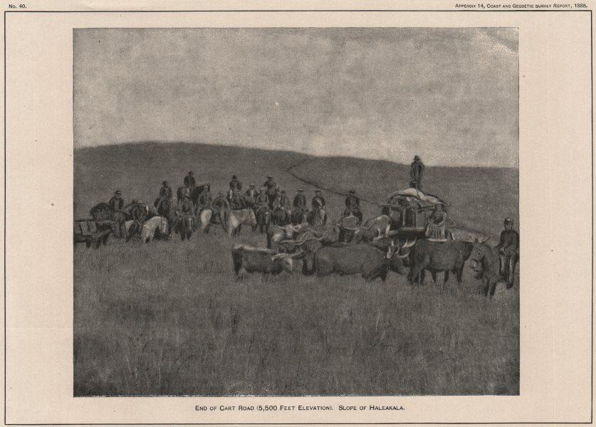 Associate Product MAUI. End of Cart Road (5500 Feet) . Slope of Haleakala. Hawaii. USCGS 1889