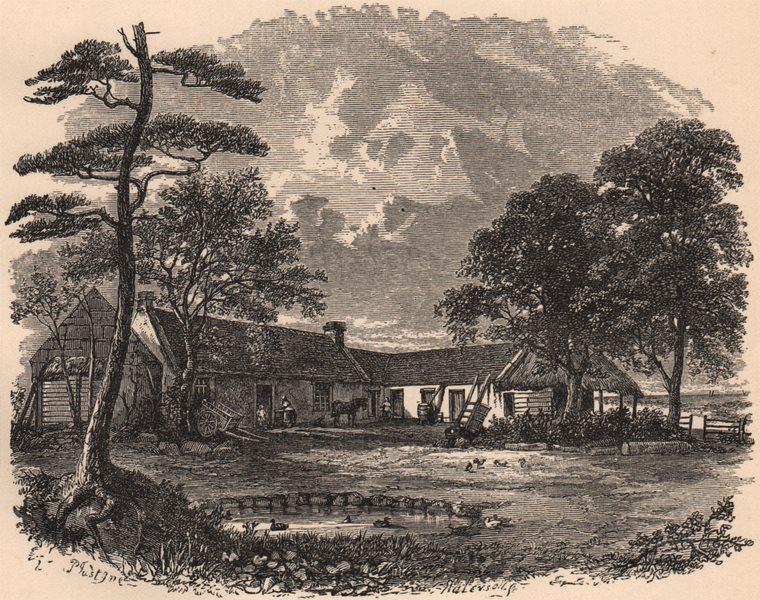 Associate Product AYRSHIRE. Mount Oliphant. Scotland 1885 old antique vintage print picture