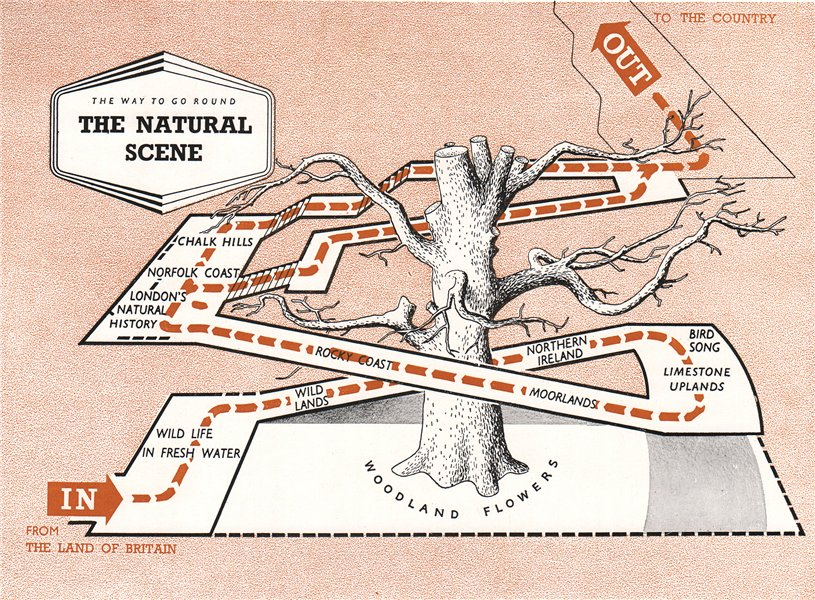 Associate Product FESTIVAL OF BRITAIN. The natural Scene exhibit. Tour plan 1951 old vintage map