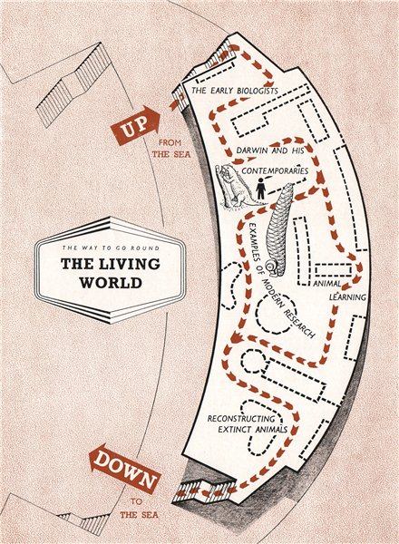 Associate Product FESTIVAL OF BRITAIN. The living World exhibit. Tour plan 1951 old vintage map