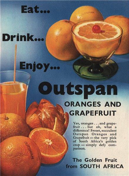 Associate Product OUTSPAN ADVERT. Outspan Oranges & Grapefruit. South Africa. Fruit 1951 print