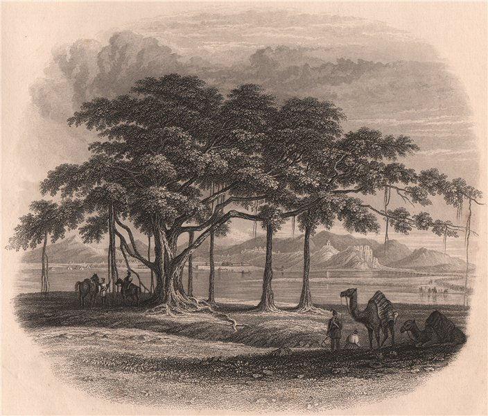 BRITISH INDIA. Encampment near Ropar (Rupnagar) on the Sutlej 1858 old print