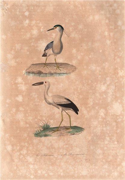 AEQUORNITHES. Bihoreau (Night Heron); Bec Ouvert (Openbill). BUFFON 1837 print
