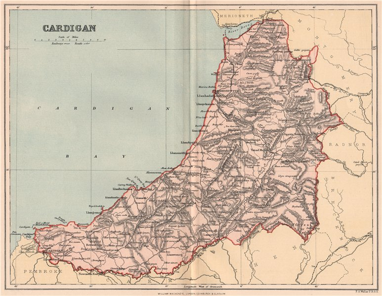 Associate Product CARDIGANSHIRE. Antique county map. Wales 1893 old plan chart