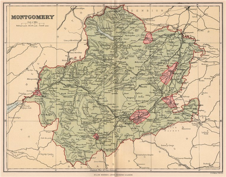 Associate Product MONTGOMERYSHIRE. Antique county map. Wales 1893 old plan chart