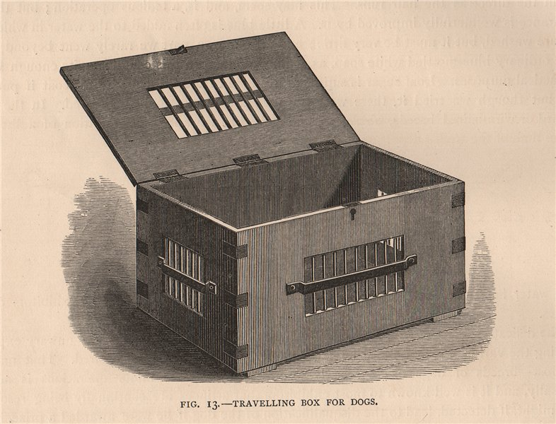 Associate Product DOGS. Travelling box for dogs 1881 old antique vintage print picture