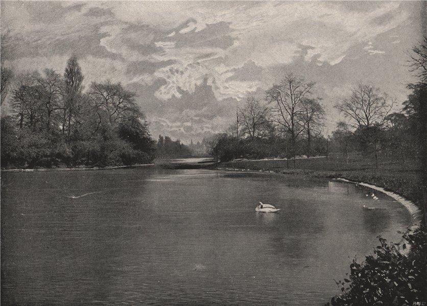 Associate Product The Lake, St. James's Park. London 1896 old antique vintage print picture