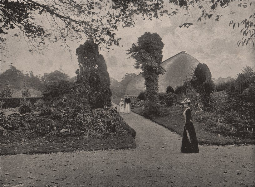 Associate Product The Royal Horticultural Gardens, Chiswick. London. Parks 1896 old print