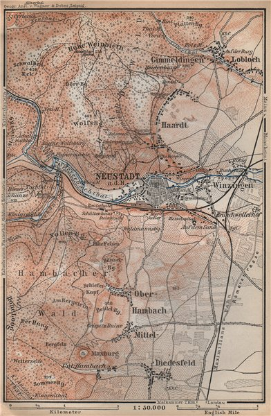 Associate Product NEUSTADT AN DER WEINSTRAßE & WINZINGEN. Neustadt an der Haardt karte 1896 map