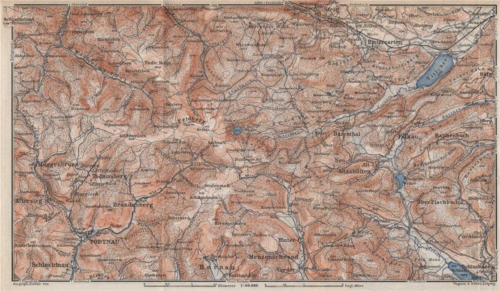 Associate Product SCHWARZWALD. BLACK FOREST. FELDBERG Todtnauberg Bisten Hintzarten Moor 1889 map