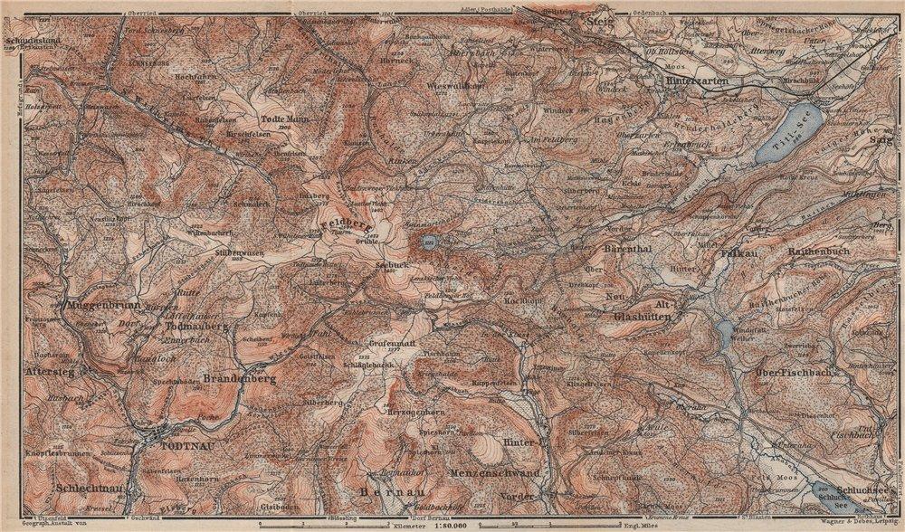 Associate Product SCHWARZWALD. BLACK FOREST. FELDBERG Todtnauberg Bisten Hintzarten Moor 1892 map