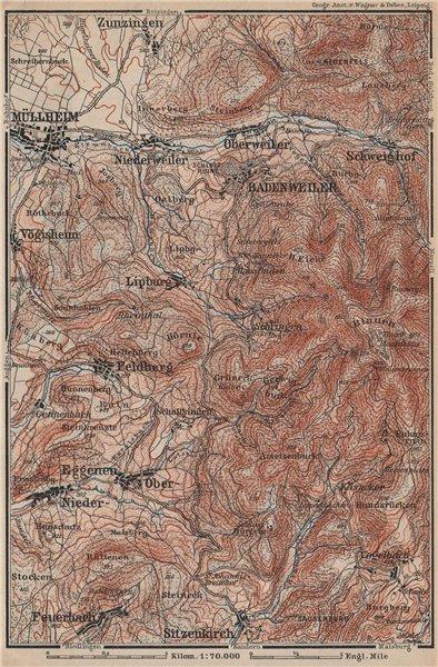 Associate Product BADENWEILER environs. Müllheim Markgräflerland Blauen Schwarzwald 1892 old map