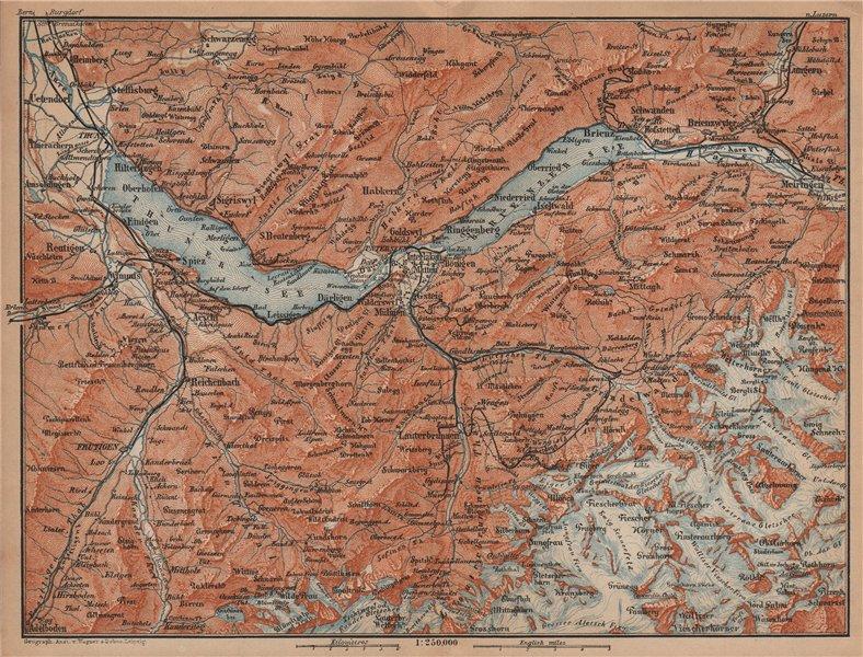 Associate Product BERNESE OBERLAND. Wengen Mürren Grundelwald Reutigen Interlaken Eiger 1901 map