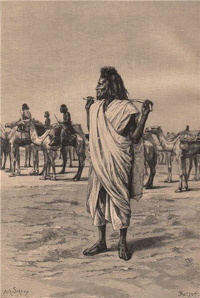 Bisharin camel-driver. Egypt 1885 old antique vintage print picture