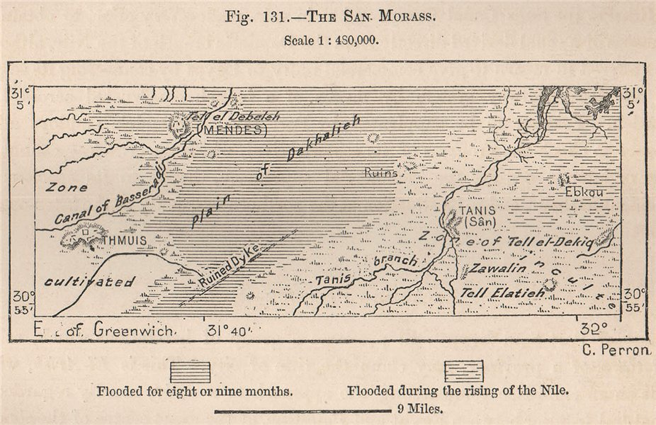 Associate Product The San Morass. Plain of Dakhalieh. Egypt 1885 old antique map plan chart