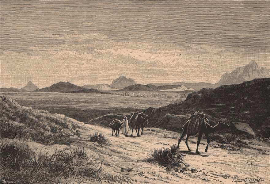 Associate Product Tunisian landscape - View from the Tellat pass 1885 old antique print picture