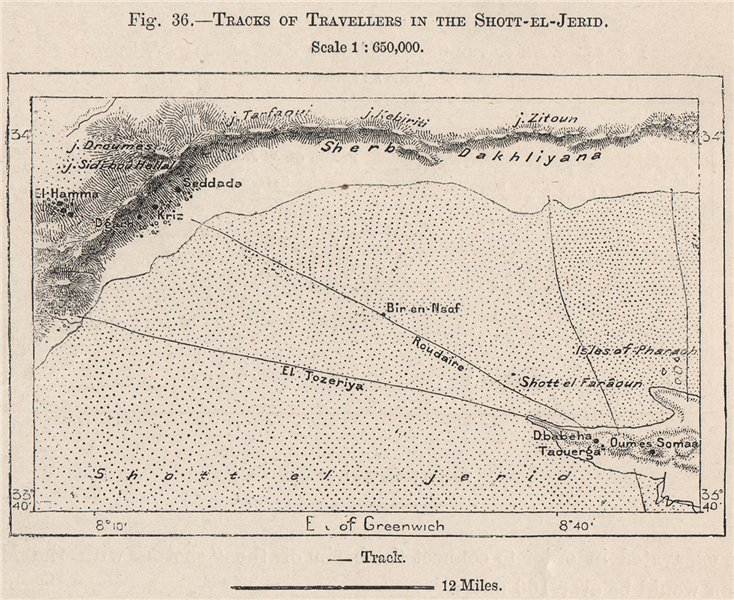 Associate Product Tracks of Travellers in the Chott-el-Jerid. Tunisia 1885 old antique map chart