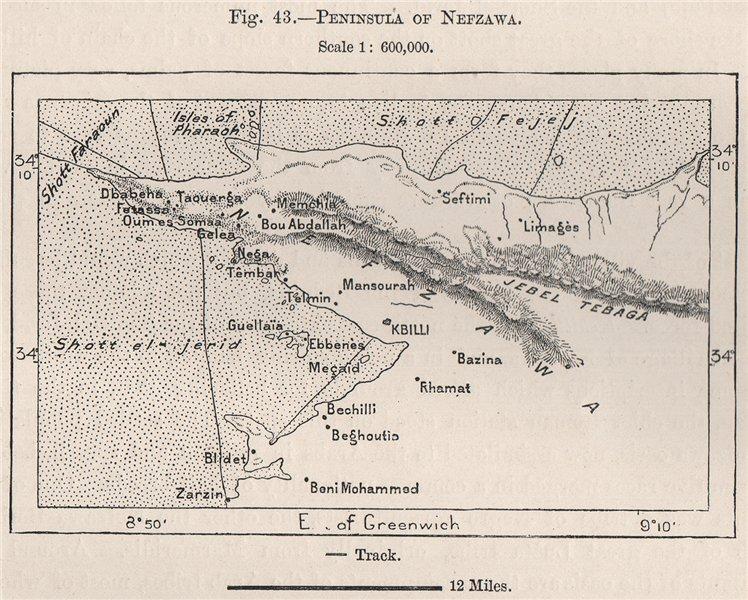 Associate Product Nefzawa/Nefzaoua peninsula. Kebili/Qibili. Chott el Djerid. Tunisia 1885 map