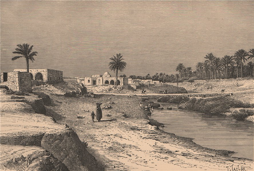 Gabes - View from the Jara Gardens. Tunisia 1885 old antique print picture