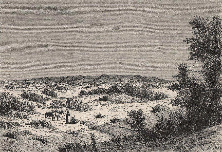 Associate Product Oued Mya valley, between Garaa El-Onkser & Garaa T-el-Beida. Algeria 1885