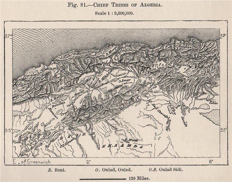 Associate Product Chief Tribes of Algeria 1885 old antique vintage map plan chart