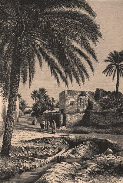 Associate Product Street view in Biskra. Algeria 1885 old antique vintage print picture