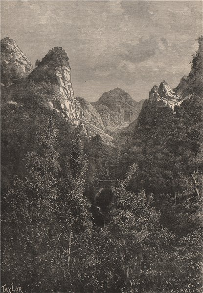 Associate Product Madeira - View from Mount Sao Jorge. Portugal. West African Islands 1885 print