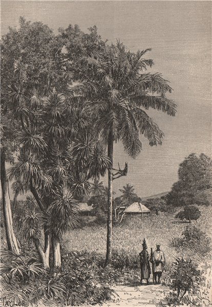 Associate Product Inland Scenery, Slave Coast. Africa. Nigeria 1885 old antique print picture